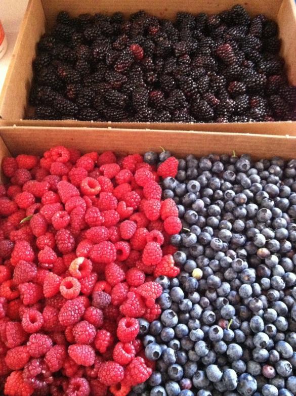 Bonkers for Berries